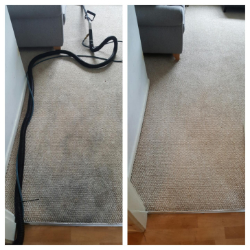 carpet cleaning in York