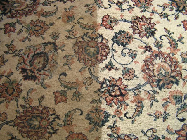 Rug cleaning York